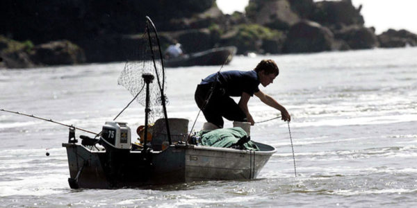 COLUMBIA DAMS VS FISH